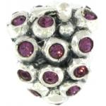 Biagi wine grapes purple